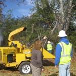 ROW & Easement Mitigation Services