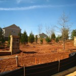 Collingswood Subdivision